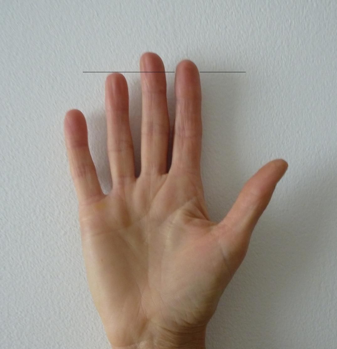 Как сделать чтобы пальцы на руках были худые 657