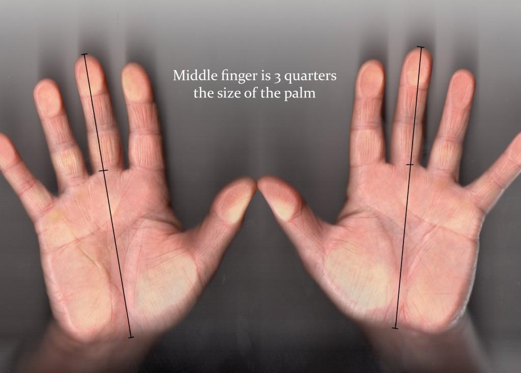 short fingers measurment