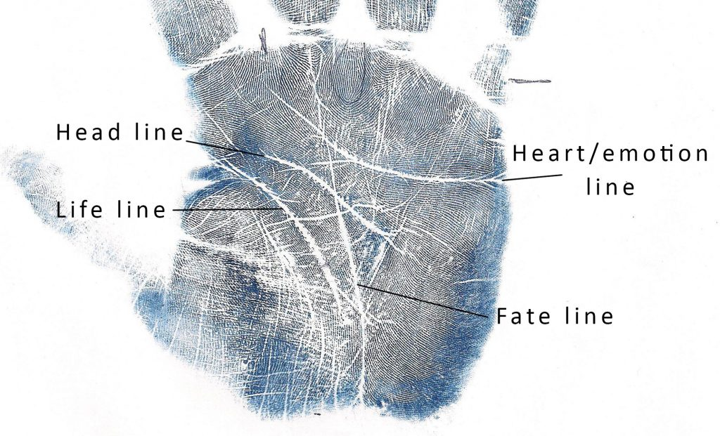 lines-labled-head-heart-life-fate